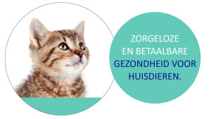 HZP afbeelding kat2