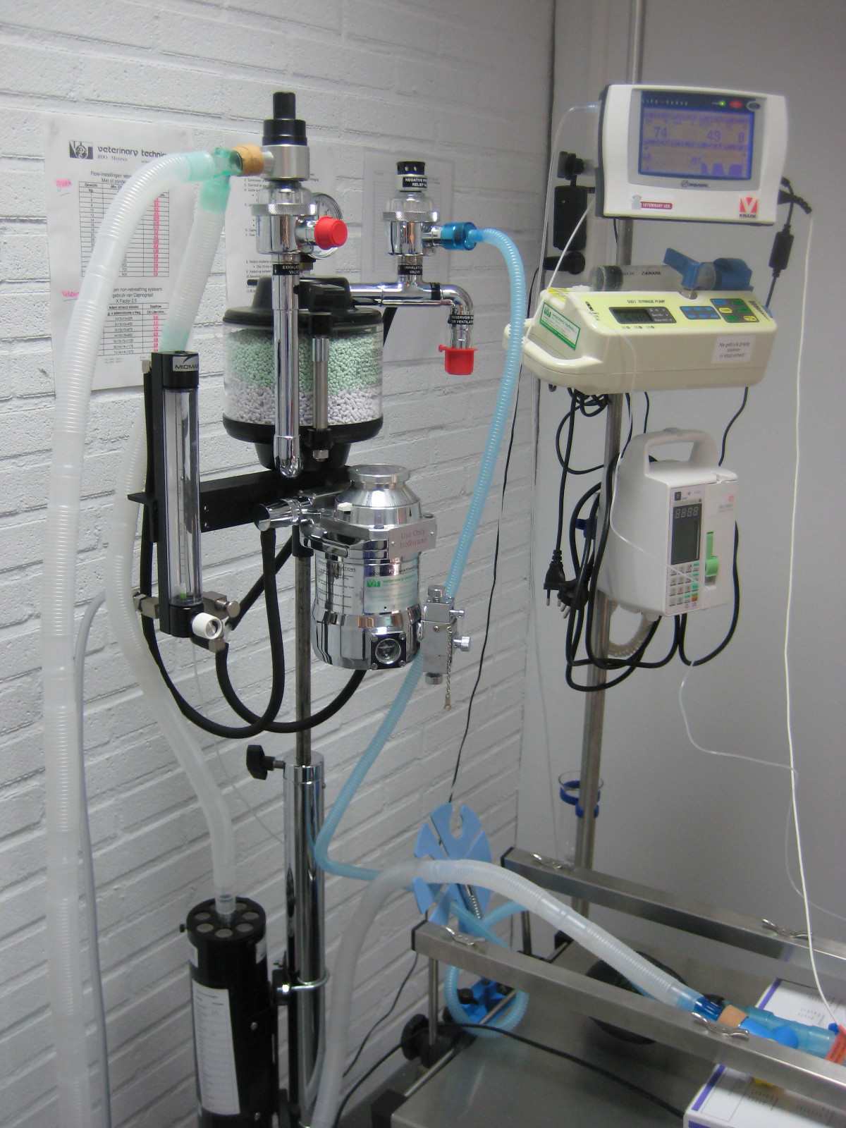 Onze apparatuur is up to date en wordt jaarlijks getest op veiligheid. Zowel injectie als gasnarcose hebben wij tot onze beschikking!